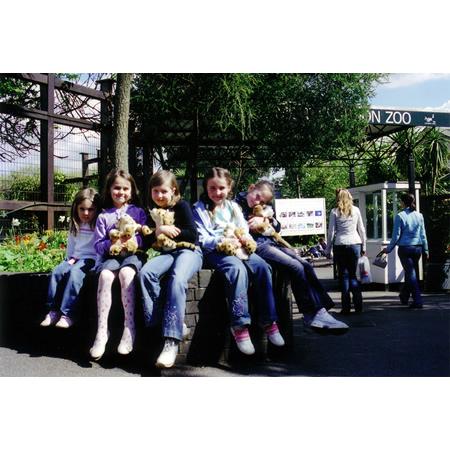 London Zoo #4, 2005